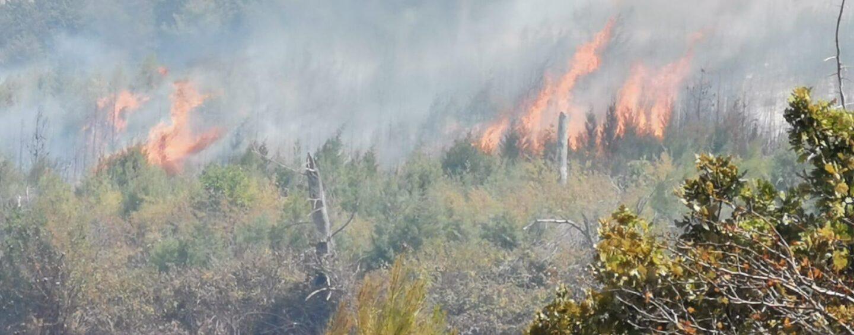 Ancora fiamme in Irpinia, vasto incendio a Scampitella