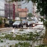 FOTO / Il maltempo si abbatte anche su Avellino, disagi dappertutto: rami invadono via Moccia