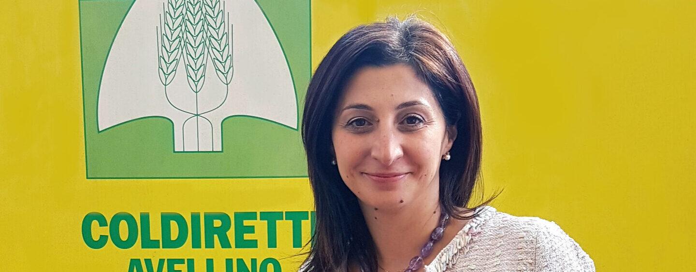 """Burocrazia, Coldiretti Avellino: """"Scongiurato schiaffo ai nostri giovani imprenditori"""""""