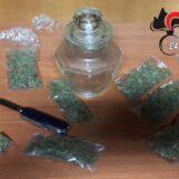 San Michele di Serino, marijuana nel sottoscala dell'abitazione: 24enne arrestato