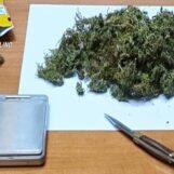 Volturara Irpina, coltivava marijuana: 48enne agli arresti domiciliari