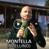 VIDEO/ 40 anni dal terremoto in Irpinia: Luca Abete racconta la situazione oggi