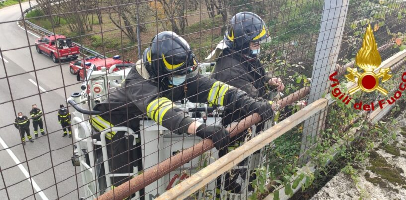 FOTO / Avellino, tubolari pericolanti sul viadotto della variante: intervengono i pompieri