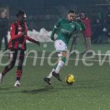 Incitarono i lupi prima di Avellino-Foggia, sanzionati 10 tifosi biancoverdi