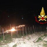 VIDEO/ Perdita di gas fa bruciare vigneto in località San Martino: arrivano i caschi rossi
