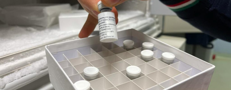 266 le dosi di vaccino somministrate ieri in Irpinia nei centri vaccinali