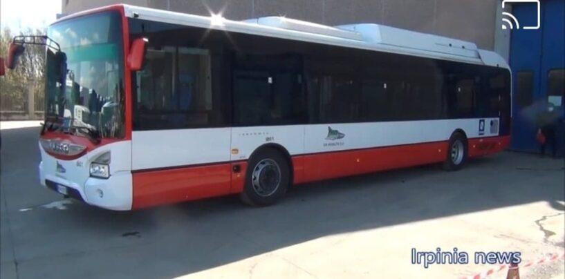Pronti i nuovi bus ibridi Air: da Maggio circoleranno ad Avellino/VIDEO