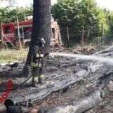 Forino, paura sul Monte Salto: incendio in un fondo comunale