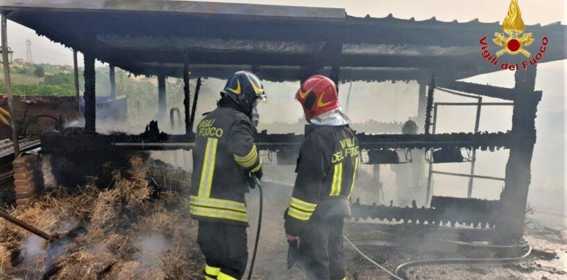 FOTO / Lapio e Montella, due incendi in poche ore