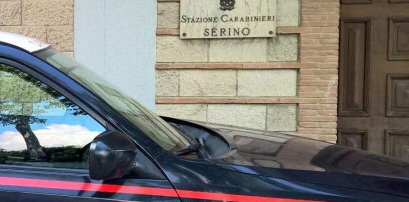 San Michele di Serino, sequestrato un canile abusivo