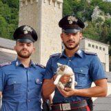 """Carabinieri in prima linea a difesa di animali e ambiente, il ringraziamento di """"Sos Natura"""""""