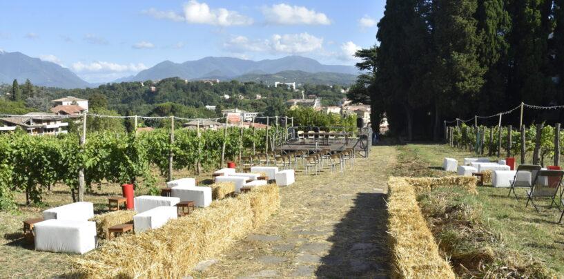 """Cucina, cinema, teatro tra i filari: all'Agrario di Avellino è tempo di """"ricreazione"""""""