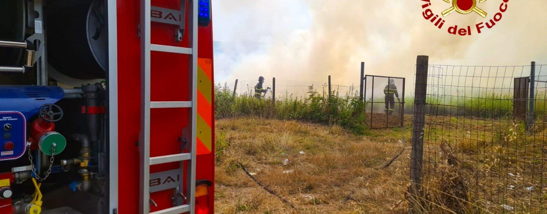 Montoro, macchia mediterranea in fiamme: sul posto due squadre dei vigili del fuoco