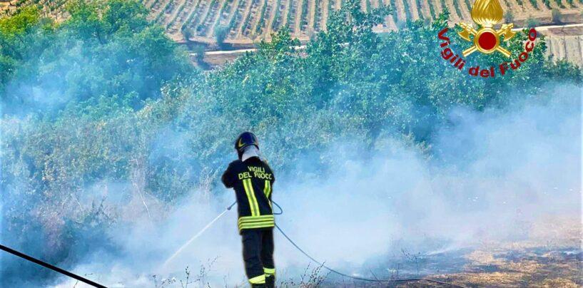 Incendi, da Aquilonia a Castelfranci: oltre 50 interventi dei caschi rossi in Irpinia