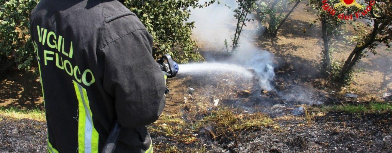 Sterpaglie in fiamme a bordo strada sull'A16: arrivano i caschi rossi di Avellino