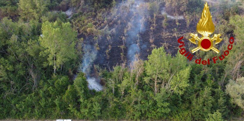 Manocalzati, a fuoco 3mila metri di macchia mediterranea a ridosso delle abitazioni