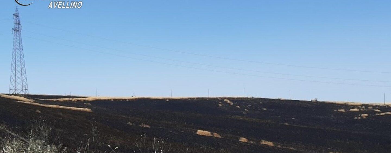 Bisaccia, incastrato da telecamere e gps: denunciato 30enne che mandò in fumo 4 ettari di terreno agricolo