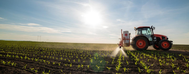 Finanziamenti Fondo Perduto Agricoltura: come ottenerli e di cosa si tratta