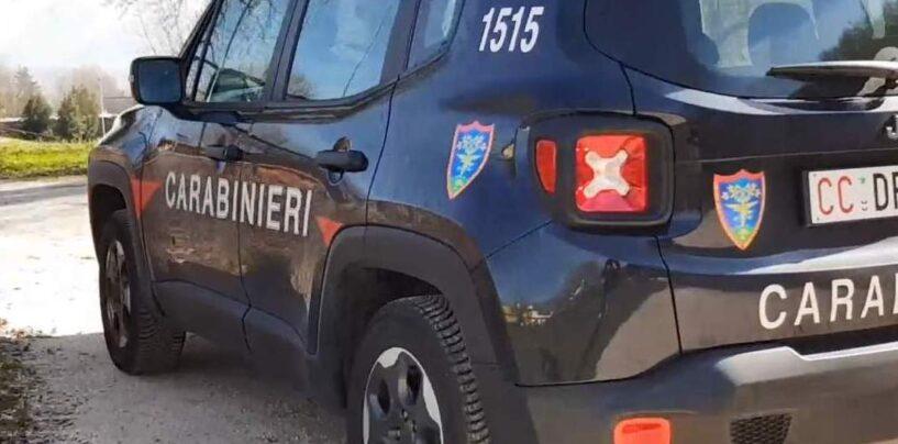 Carabinieri della Forestale: controlli a tappeto sul territorio