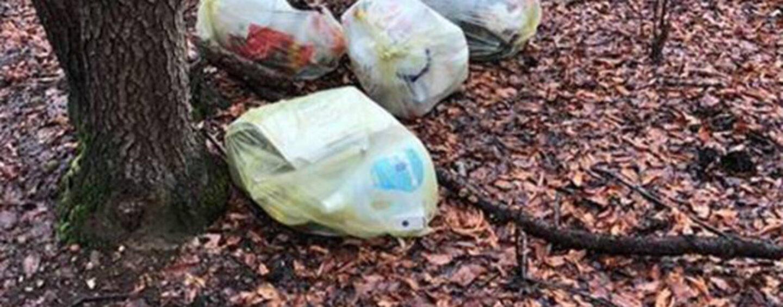 Abbandona rifiuti nel Parco Regionale dei Monti Picentini: beccato dalle fototrappole