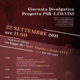 """Gal Partenio, domani a Sant'Angelo a Scala si presenta il progetto """"E.CO.VINI"""""""