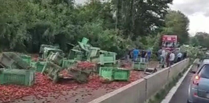 Grave incidente sull'Avellino-Salerno, traffico in tilt: autoarticolato invade corsie di marcia
