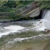 """Prata, schiuma bianca nel fiume: """"Schifezza cronica"""""""