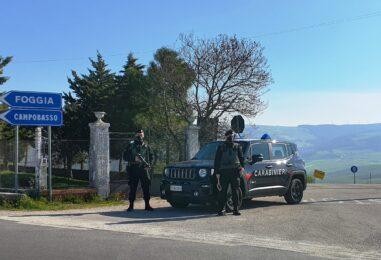 Truffa, uomo e donna denunciati a San Bartolomeo in Galdo