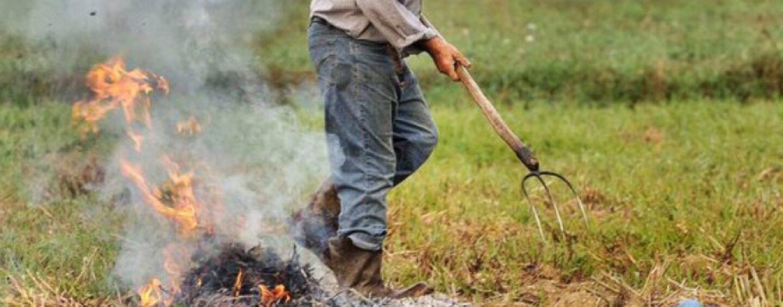 """""""I contadini non sono gli inquinatori dell'aria"""". Cia Campania e Cia Avellino chiedono una modifica dell'ordinanza comunale"""