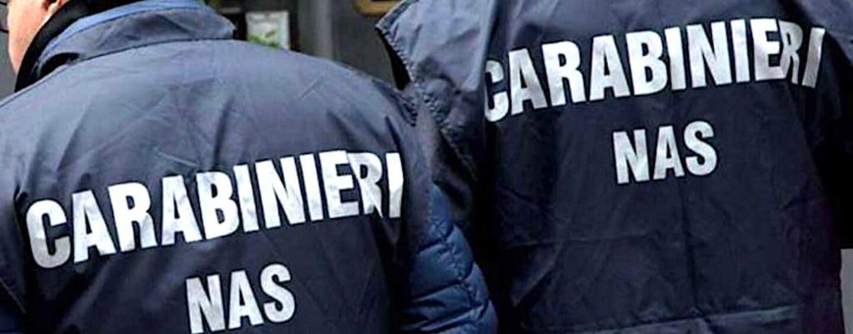 Carabinieri Salerno, il tenente colonnello Basile al comando del Nas