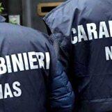 Province di Salerno ed Avellino, proseguono i controlli dei Nas: contestate 6 sanzioni