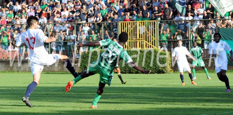 Avellino Calcio – Toscano, il Cosenza nel mirino con la folla in infermeria