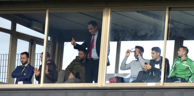 Avellino Calcio – I lupi hanno fame di play-off: alle 15 test con vista su Vicenza