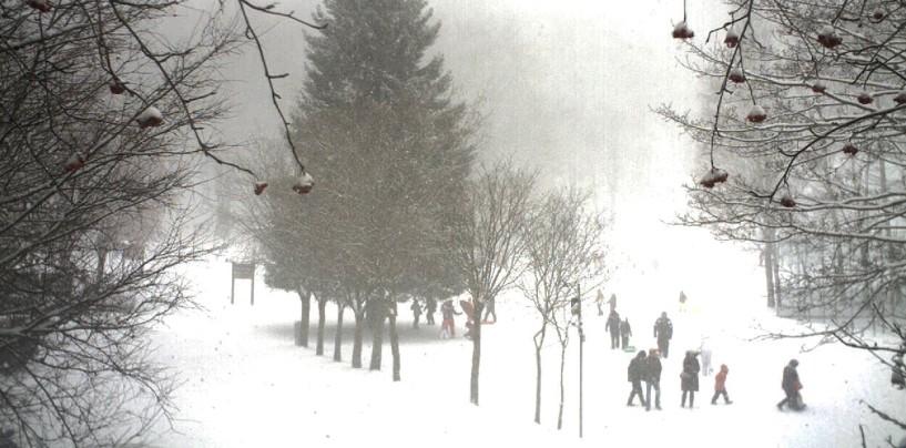 FOTO/ Nevica intensamente sul Laceno, piste aperte domani?