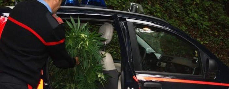 Perquisizioni a tappeto con l'unità cinofila: 4 persone sorprese in possesso di droga