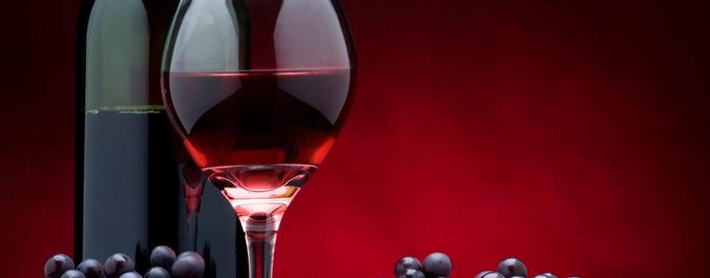 I vitigni irpini protagonisti a Paestum a Il Vino del Tuffatore