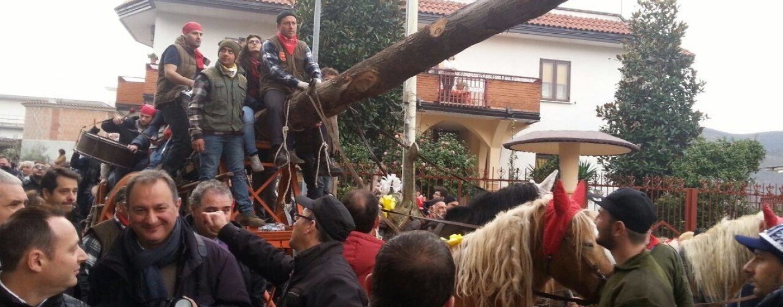 """Rai 3 fa tappa a Baiano alla scoperta del """"Maio"""""""