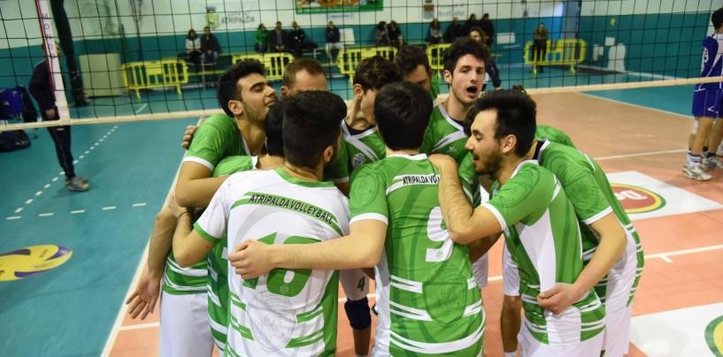 Atripalda Volleyball, ai play off con un D'Avanzo in più. Si inizia in trasferta il 23