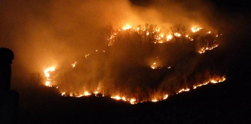 Incendi, Avellino la provincia più colpita dalle fiamme
