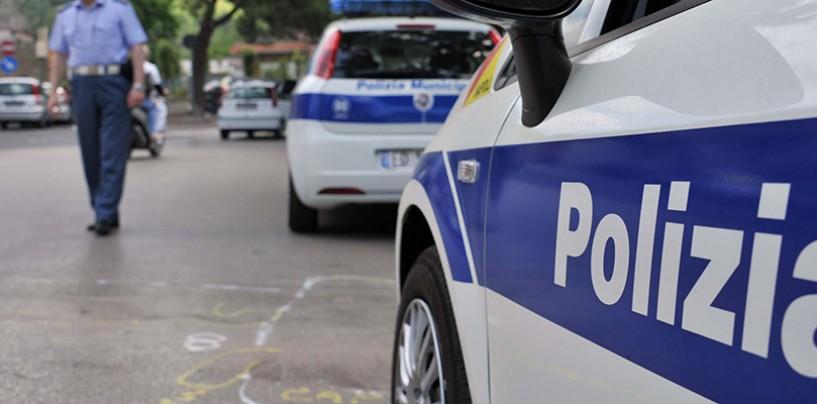 """FOTO/ Avellino, trovate esche avvelenate in strada. Il comandante Arvonio: """"Atto criminale"""""""