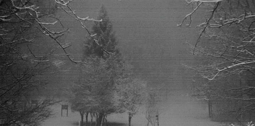 Foto/ Neve in Irpinia a 1000 metri, imbiancati Laceno e Partenio
