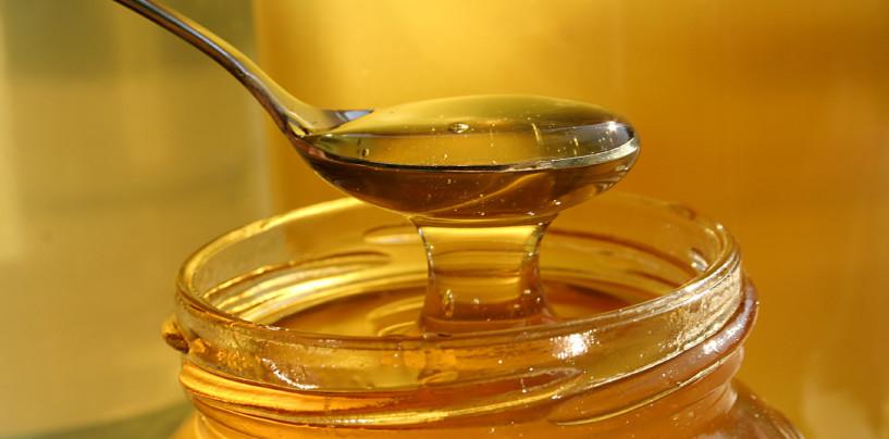 Il miele: proprietà e utilizzi invernali di un prodotto d'eccellenza d'Irpinia