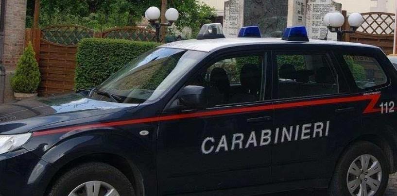 Candida, tenta di rubare legna: carabinieri denunciano 23enne.